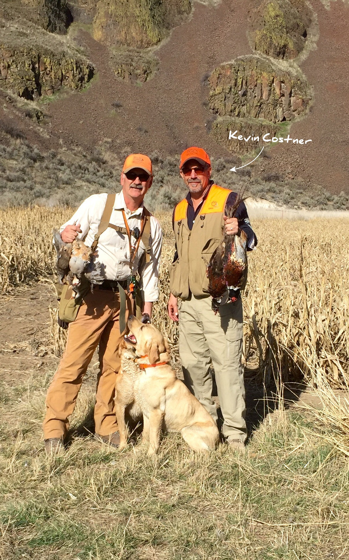 Wigeon Amp Teal Central Oregon Sporting Dog